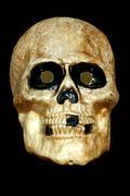 scary skull on black - stock photo
