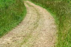 path through field - stock photo
