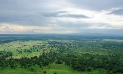 Around bwindi impenetrable forest in uganda Stock Photos