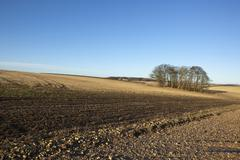 arable fields in january - stock photo
