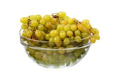 seedless grapes in glass dish - stock photo