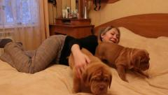 Girl and several Bordeaux mastiff puppies Stock Footage