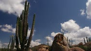 Stock Video Footage of Baja Mexico Cactus rocks and clouds timelapse