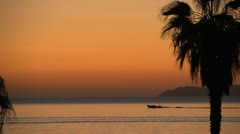 Baja sunrise with fishing boat going by and palm tree Stock Footage