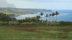 Kauai Hawaii Farm with horses palms and ocean Stock Footage