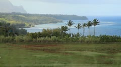 Stock Video Footage of Kauai Hawaii Farm with horses palms and ocean