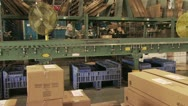 Stock Video Footage of Panoramic view of A Conveyer Belt As Workers Pack Mercandise 2