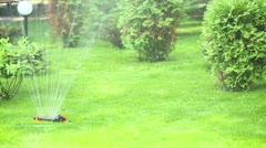 Automatic watering. - stock footage