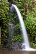 Monta stream.waterfall Stock Photos