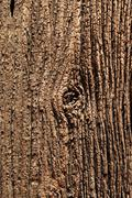 description for over 100 years old wooden surface. - stock photo