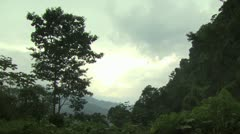 Amazon Rain Forest - stock footage