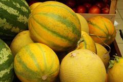 melon - stock photo