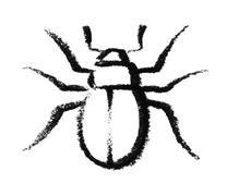 sketched beetle - stock photo