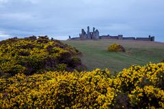 Stock Photo of dunstanburgh castle uk