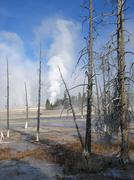 Stock Photo of yellowstone national park