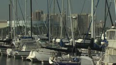 Boats Docked in A Marina; High Rise Buildings In the Background Stock Footage