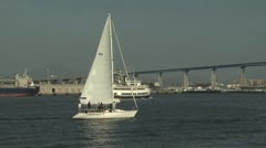 Many Boats Sailing in a Marina; Bridge in the Background Stock Footage