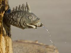 fish fountain - stock photo
