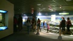 Aquarium exhibitions (1 of 7) Stock Footage