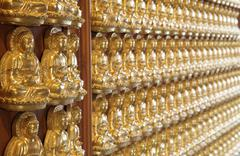 perspective of thousand buddha wall in dragon temple thailand - stock photo