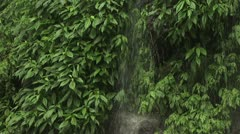 Tropical Waterfall And Surrounding Lush Vegetation 2 Stock Footage