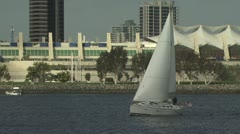 Sailboats In the Marina; City In the Background Stock Footage