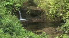 Stock Video Footage of Panorama of Lush Hawaiian Foliage and Waterfall