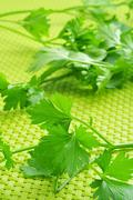 Stock Photo of parsley