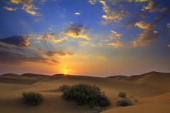sunrise in desert - stock photo