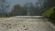 Road fall leaves 01 Stock Footage