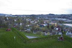 Trondheim140512.jpg Stock Photos