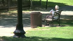 A delightful day at the park (15 of 16) Stock Footage
