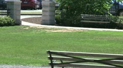 A delightful day at the park (9 of 16) Stock Footage