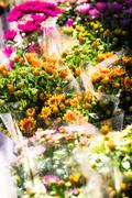 flower shop arrangement outside a shop in paris - stock photo