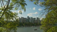 Brisbane city skyscrapers & trees Stock Footage