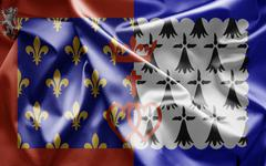 Flag of pays de la loire Stock Illustration