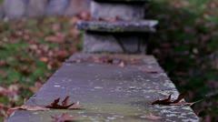 Autum Leaves on Steps Stock Footage
