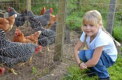 little girl with chicken - stock photo