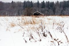 lonely house in the woods in winter - stock photo