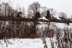 Stock Photo of snowed village in winter evening