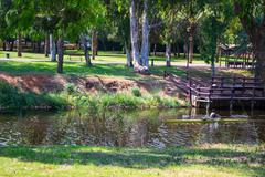 View of summer park Yarkon Stock Photos