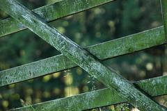 Pihapiirin gate Kuvituskuvat