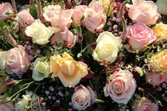 Wedding flowers: different shades of pink roses Stock Photos