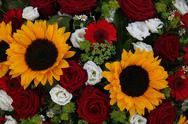 Stock Photo of sunflowers and roses