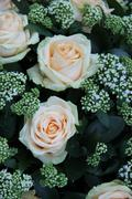 Pale pink bridal flowers Stock Photos