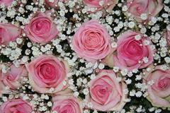 wedding arrangement with pink roses - stock photo