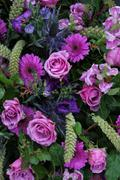 floral arrangement in different shades of purple - stock photo