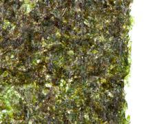 Green algae nori Stock Photos