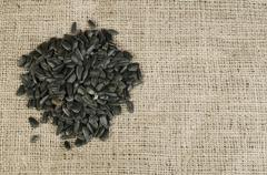 Stock Photo of sunflower seed