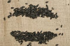 sunflower seed - stock photo